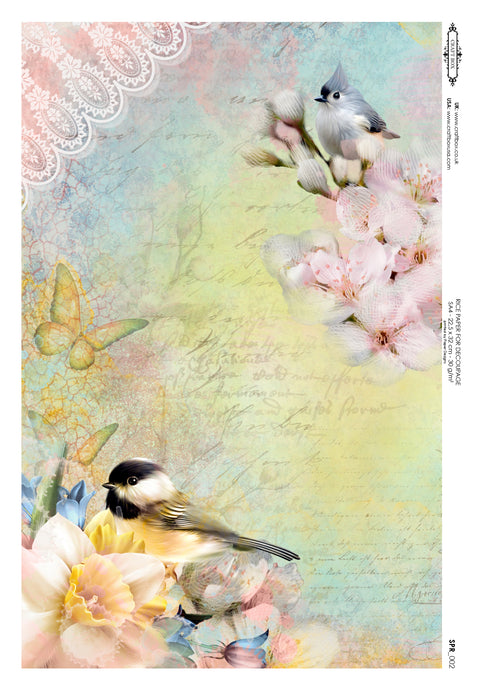 Decoupage Rice Paper - Spring Birds (A4)