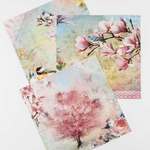 Load image into Gallery viewer, I Dream Of Spring 12x12 Paper Collection