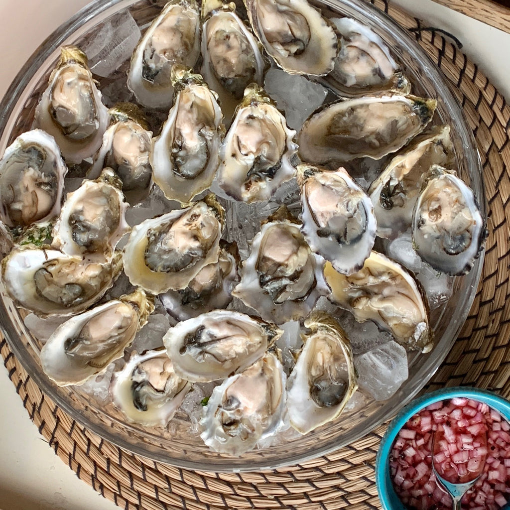 Election Party Oysters 2016