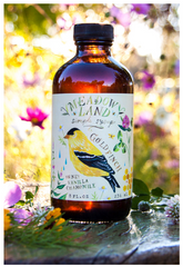 Meadowland Goldfinch Honey Vanilla Chamomile Syrup