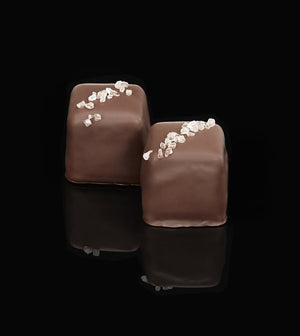 Whimsy Dark Chocolate Salted Caramels - 5 pack-Chocolate-The Meadow