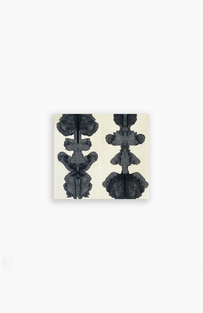 Double Ink Blot 10 x 11