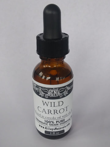 Wild Carrot Carrier Oil