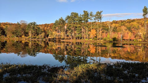 The South Mountain Reservation boasts the splendor of fall colors against an afternoon blue sky. The a perfect mirror reflection on the reservoir water paints a breathtaking image.