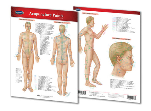 Why Are Acupuncture Points so Important?
