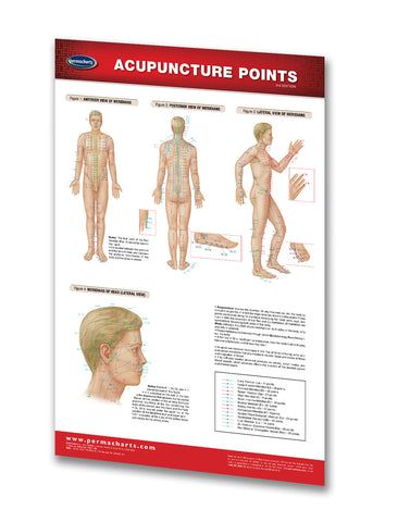 Acupuncture Points Poster / Reflexology - Medical Poster Quick Reference Chart