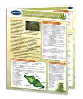 Cannabinoids & Terpenes - Permacharts Quick Reference Guide