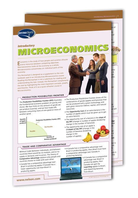 Academics - Introductory Microeconomics