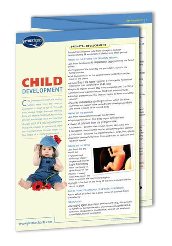 Child Development guide: Permacharts