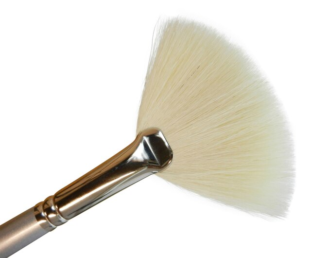 Dermafix Fan Brush