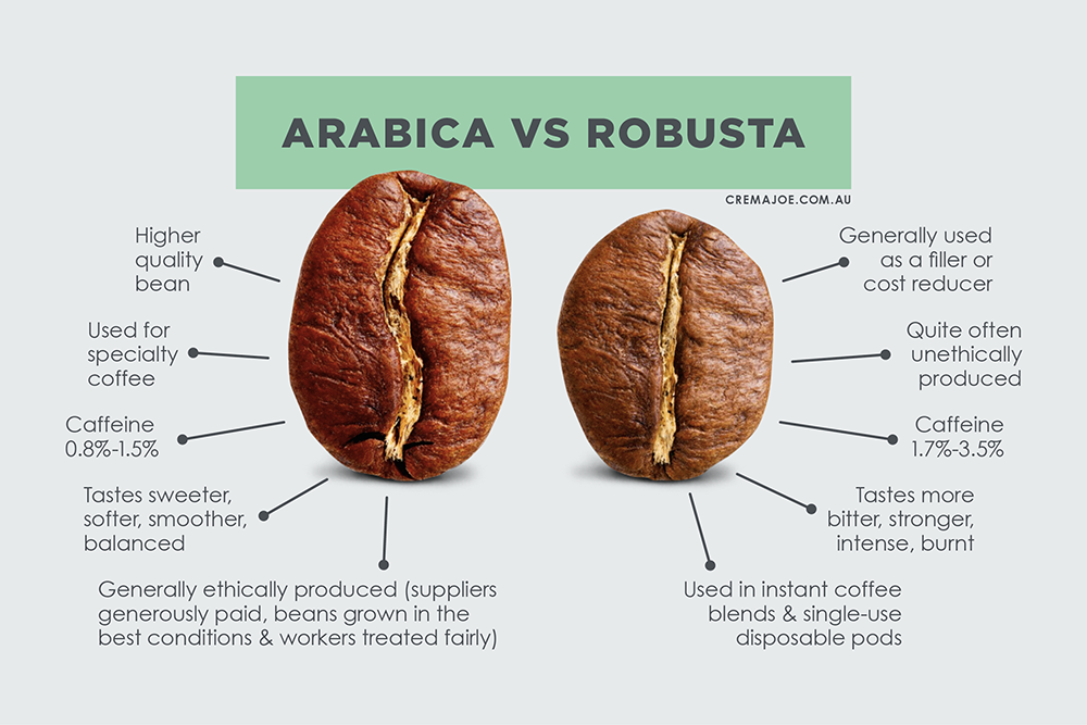 Arabica Vs Robusta: Why some coffee pods taste stronger than others, & why quality matters