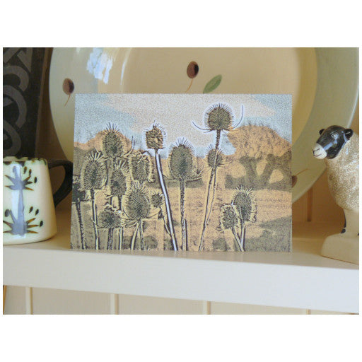 Country Collection - Rother Teasels