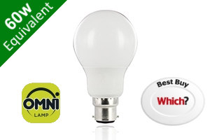 Omni 260° Classic Globe B22 8.2W (60W) Frosted LED Light Bulb
