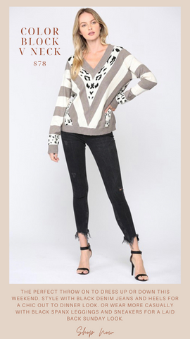 COLOR BLOCK V NECK FATE ANIMAL PRINT DETAIL FALL SWEATER KNIT