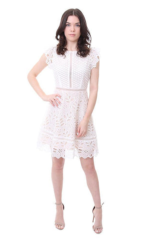 BB Dakota Scalloped Trim Embroidered Lace White Party Mini Dress