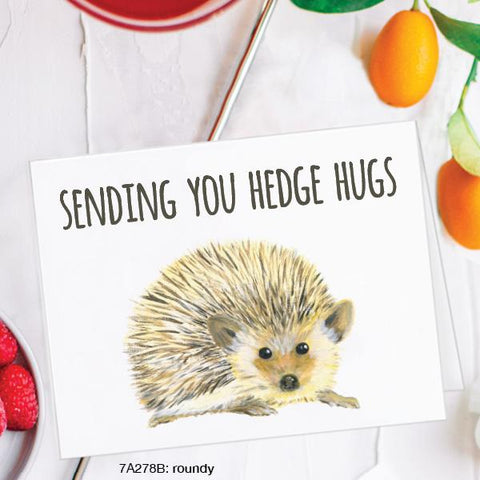 Sending You Hedge Hugs Card