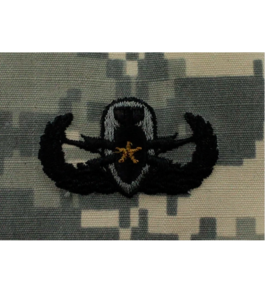 Army Senior ACU Badge