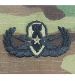 Army Senior OCP Badge