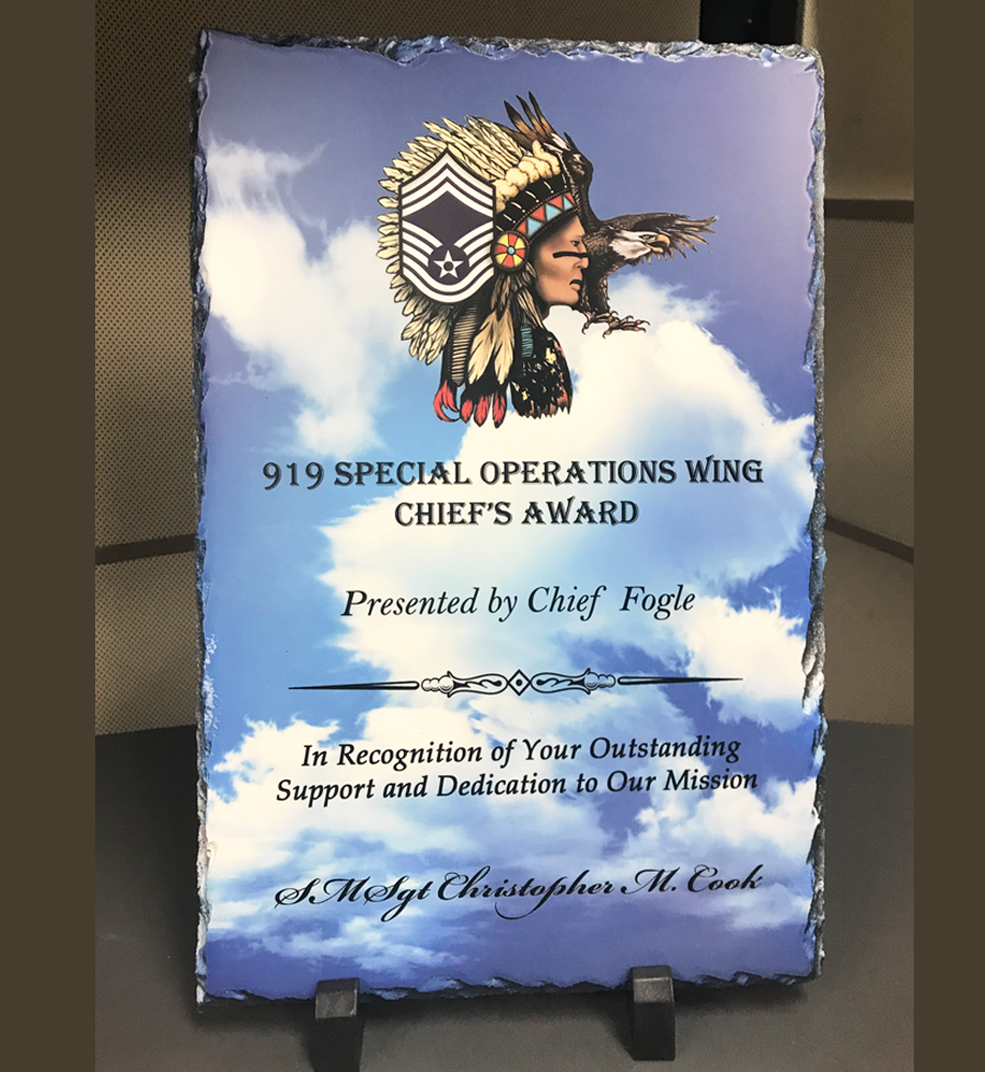 919 SOW Chief's Award