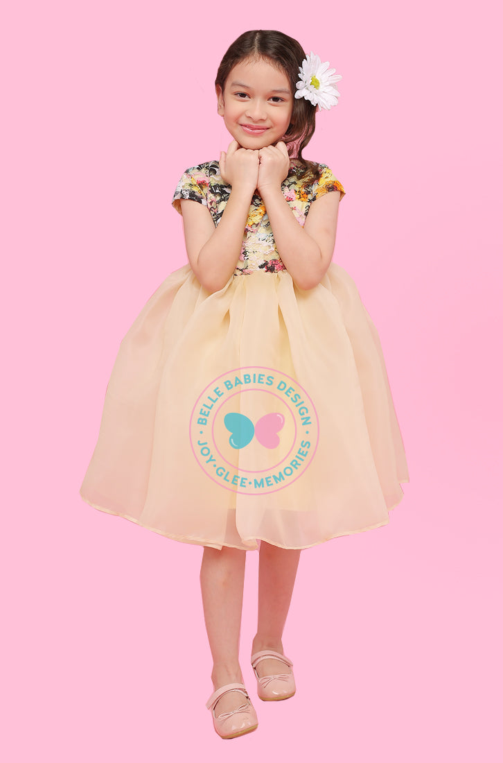 BBD Organza Dress - Yellow