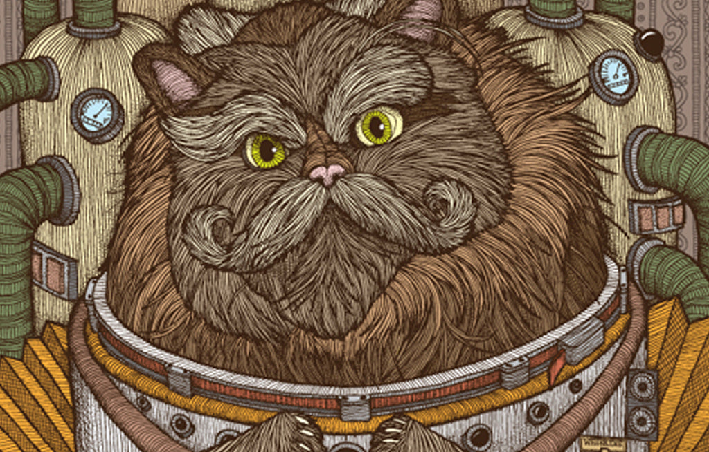 Commander Whiskers by Chuck U