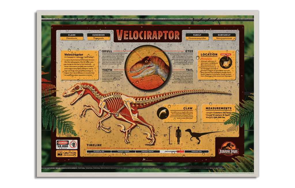 Jurassic Park: Velociraptor by DKNG