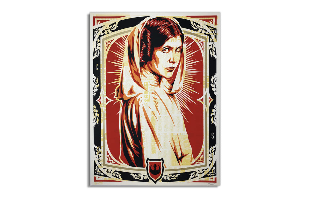 Princess Leia by Epyon5