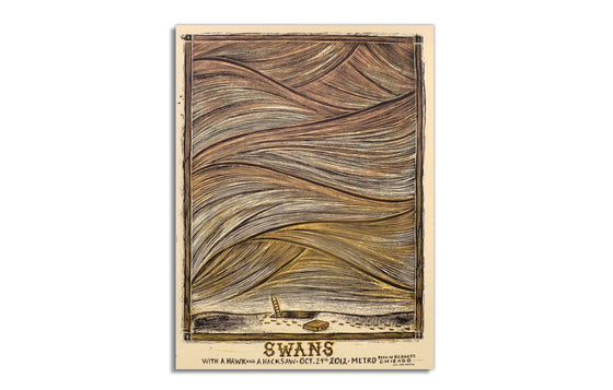 Swans [Chicago 2012] by Dan Grzeca