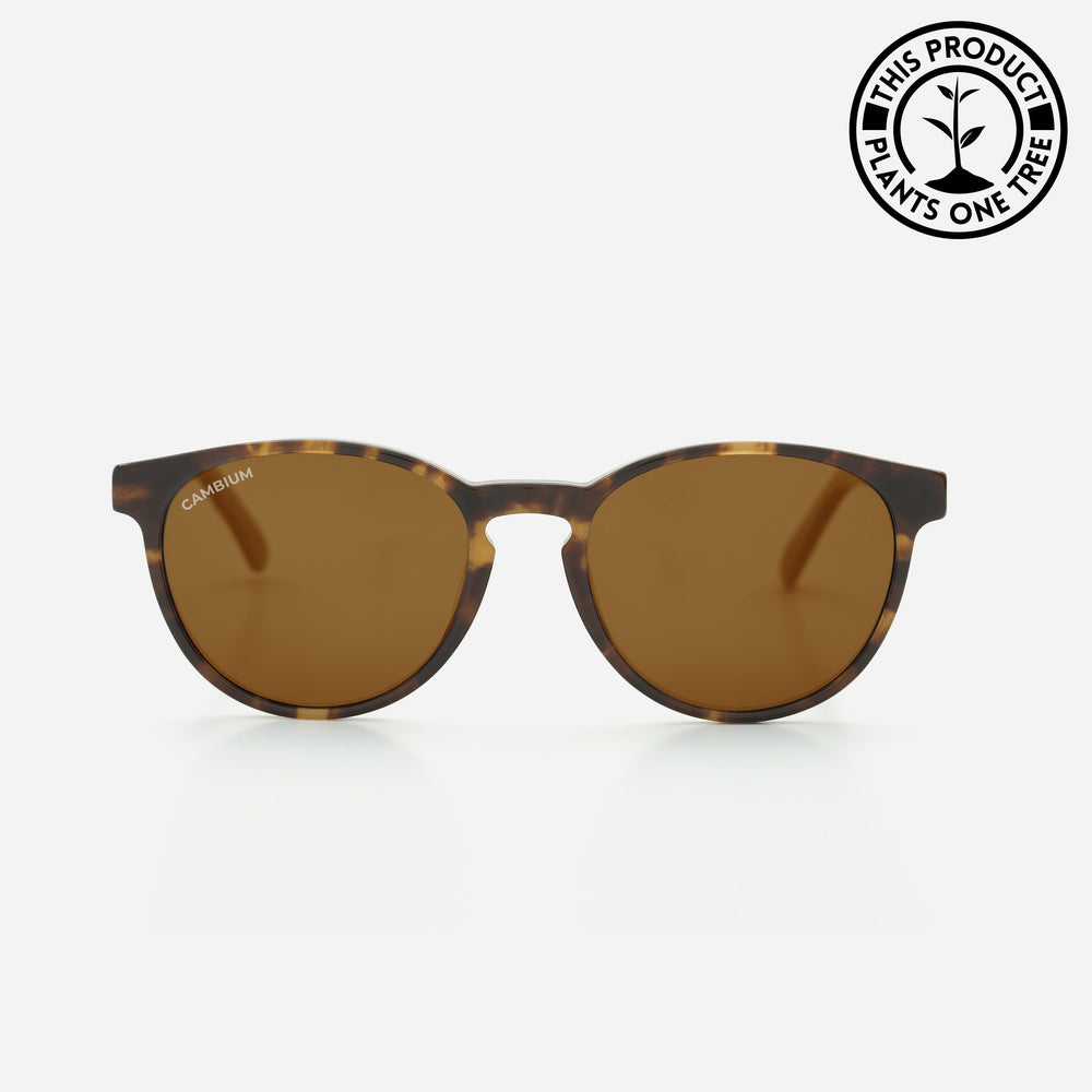 Maui | Prescription | Recycled Plastic & Wood Frame