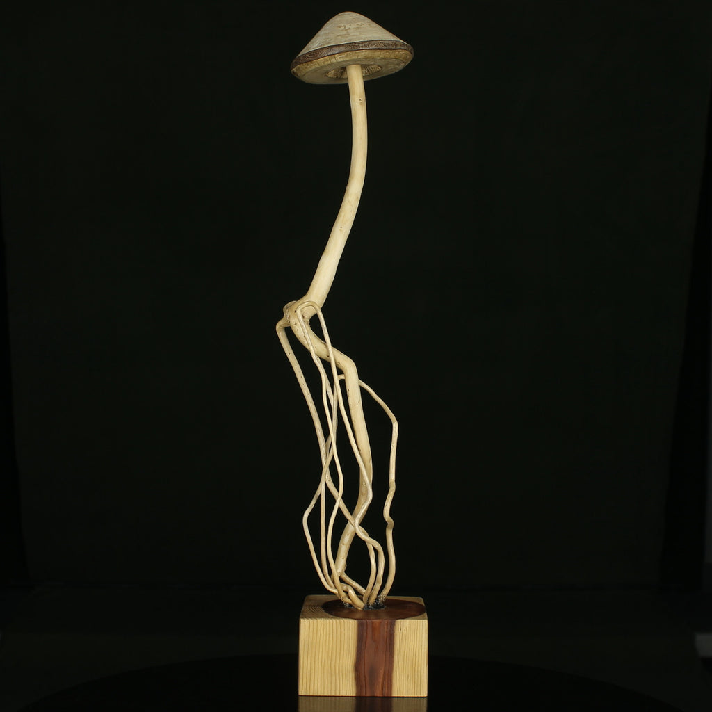 Enchanted Forest Mushroom # 14, mushroom art from wood, tree, and roots.