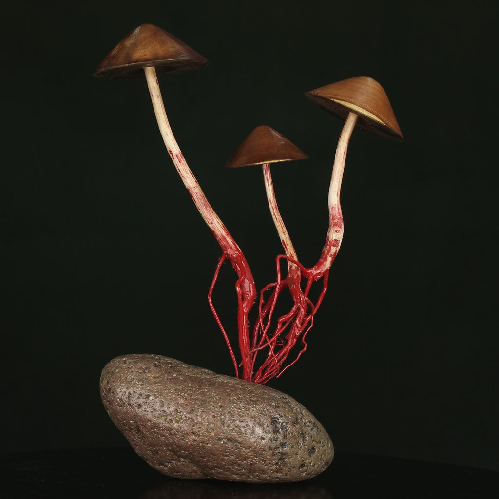 Enchanted Forest Mushroom Trio #2, wood, tree, root, and rock art