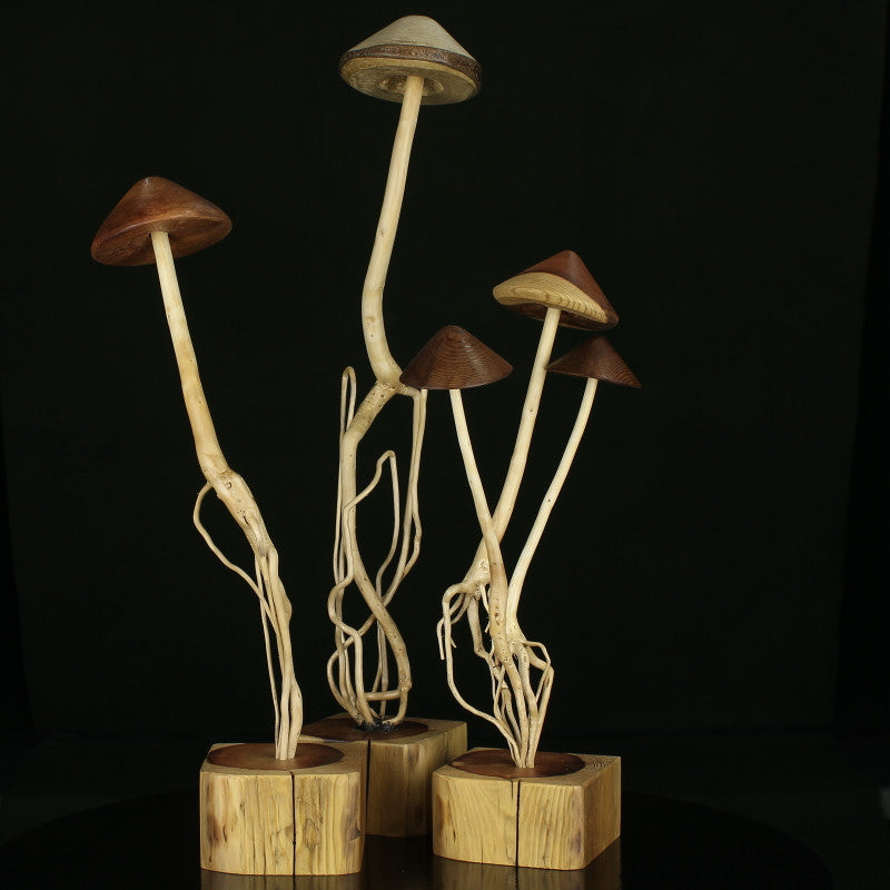 Sculptures, wood mushroom caps on trees in wood base