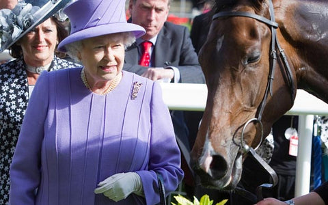 Queen Elizabeth II with a thoroughbred.