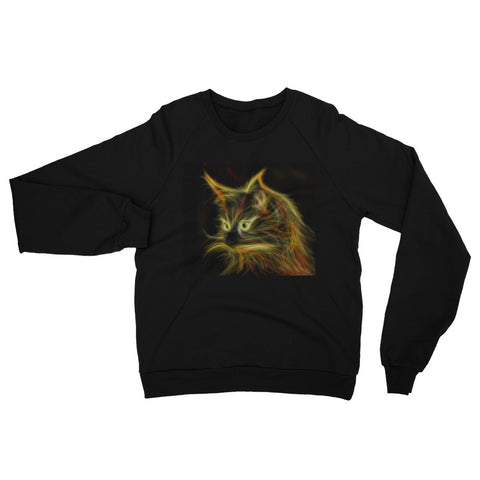 Cat Raglan sweater (Free shipping)