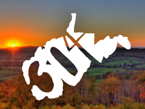 304 Decal - Loving West Virginia (LovingWV)
