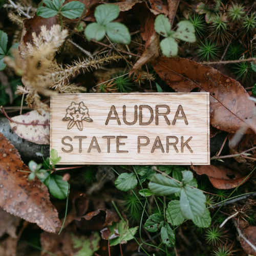 Audra - State Park Magnet