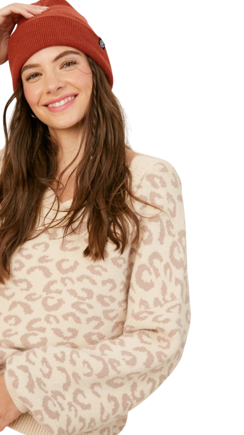 V-Neck Leopard Sweater