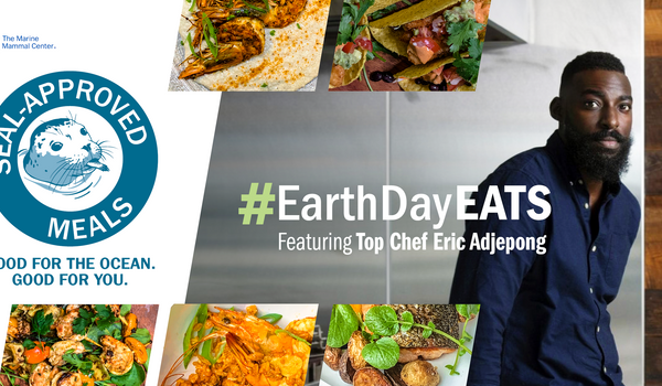 Earth Day Eats – A celebration of the 50th Anniversary of Earth Day