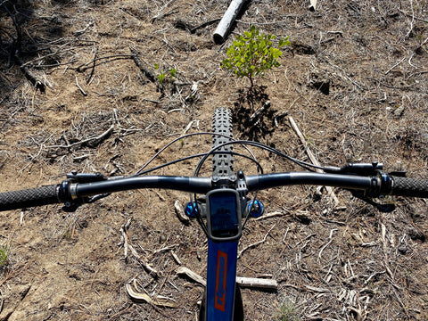 Image of bike handle bars from top down.
