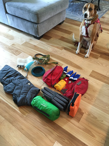 Lulo and all her backpacking gear.