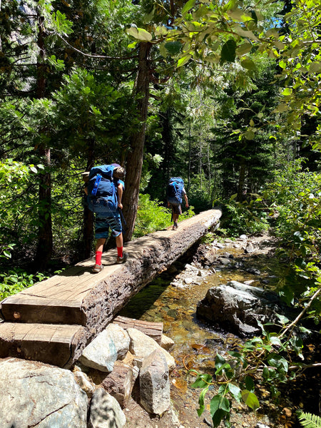Susan's sons hiking with their backpacks over a log
