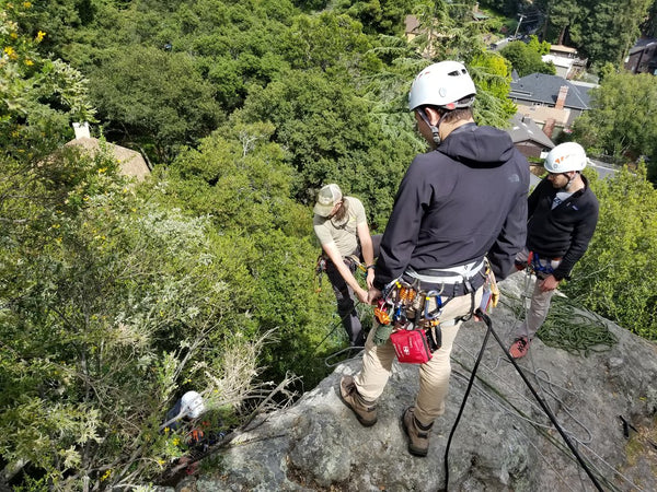 Gym to Crag: Anchors & Rappelling