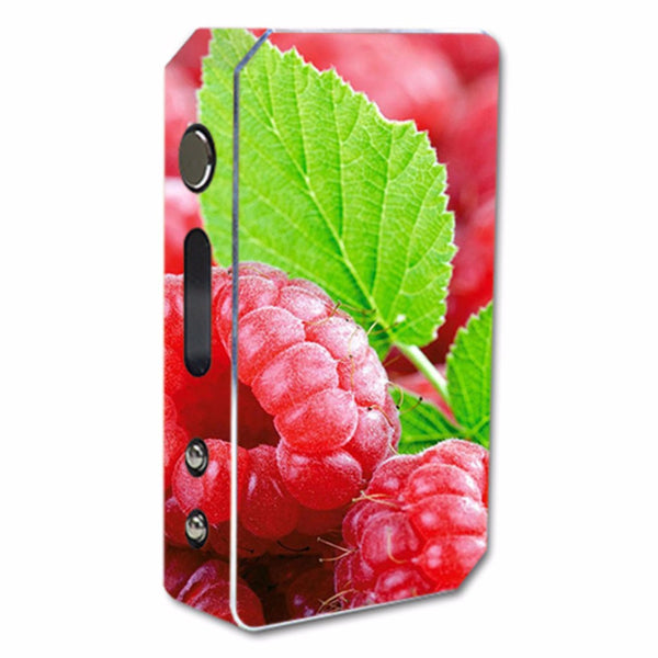 Raspberry, Fruit Pioneer4You ipv3 Li 165W Skin