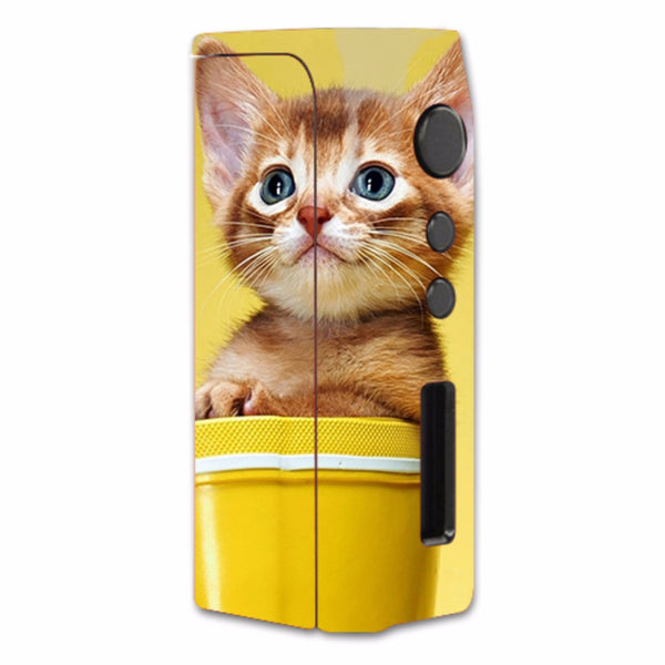 Cute Meng Kitten Pioneer4You iPVD2 75W Skin