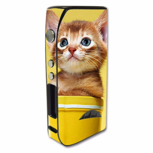 Cute Meng Kitten Pioneer4You iPV5 200w Skin