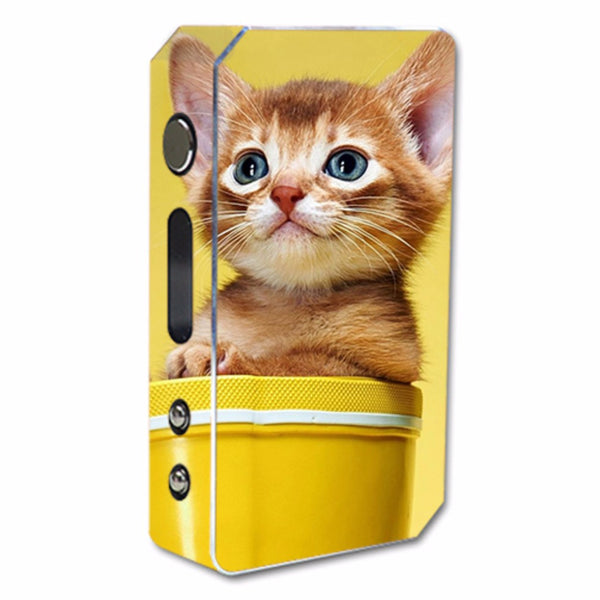 Cute Meng Kitten Pioneer4You ipv3 Li 165W Skin