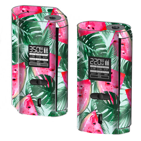 Watermelon Pattern Palm Smok GX2/4 Skin