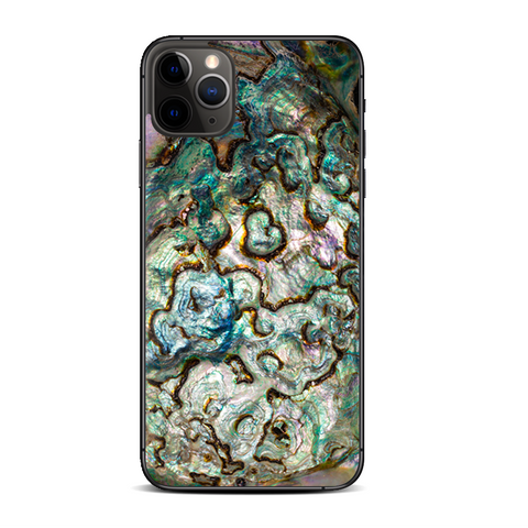 Abalone Shell Gold Underwater