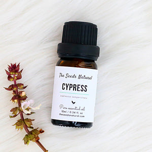 cypress pure essential oil, oily skin, mosquito repellent, dandruff, acne, 丝柏精油, essential oil malaysia, skin cleansing, essential oil malaysia, the seeds natural