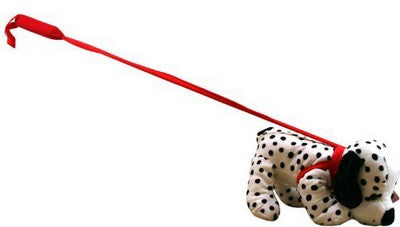 Dalmation-on-a-Lead
